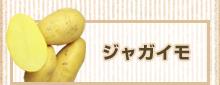 北海道十勝産ジャガイモ 販売