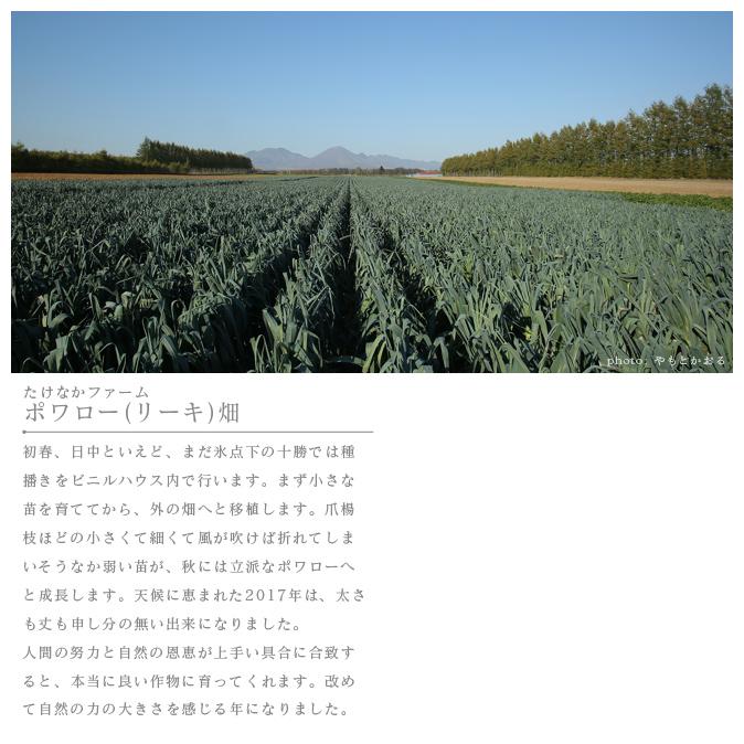農場風景01