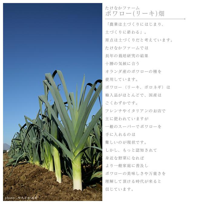 農場風景02